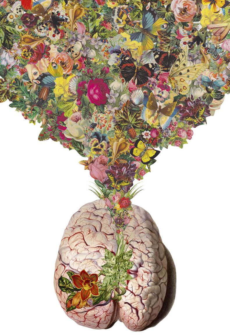 Психотерапия и психосоматика. Характер и болезнь. Content_psihosomatika2_1