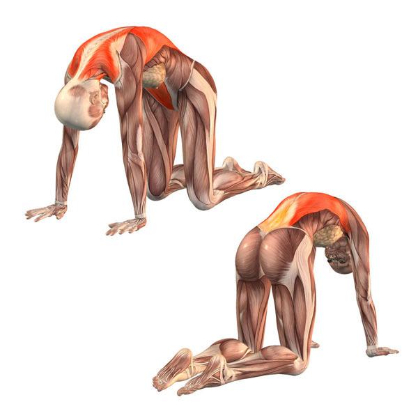 6 упражнений, которые изменят качество вашей жизни