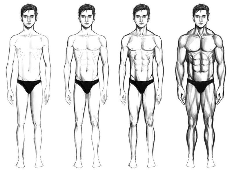 Индекс сексуальности по соотношению длины ног к росту