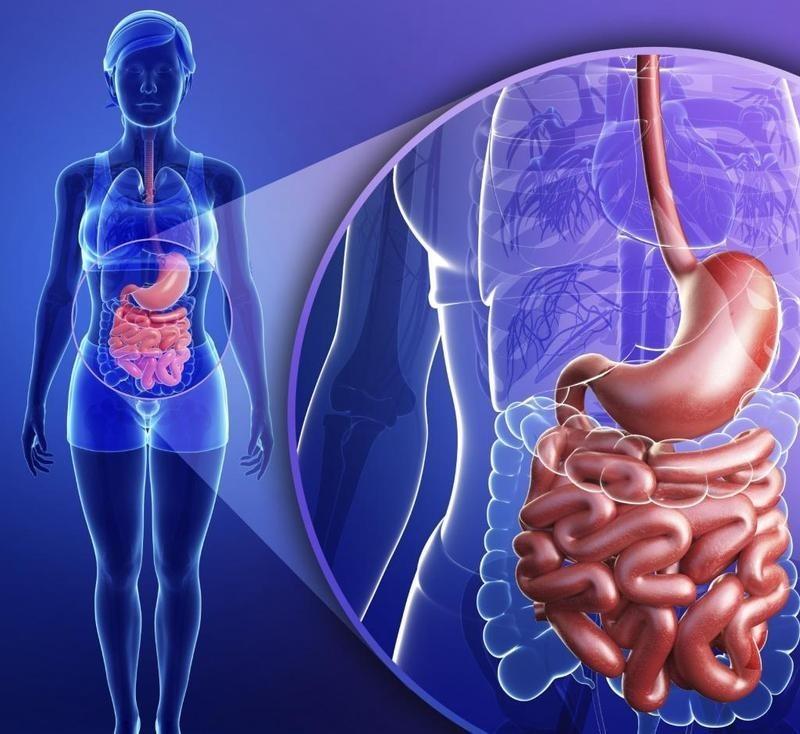 Онколог Марк Хайман о том, что бы он стал делать, если бы ему установили диагноз «рак»