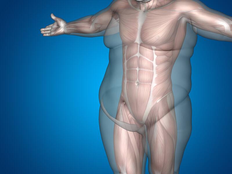 Как добиться успеха в похудении: 6 советов молекулярного биолога
