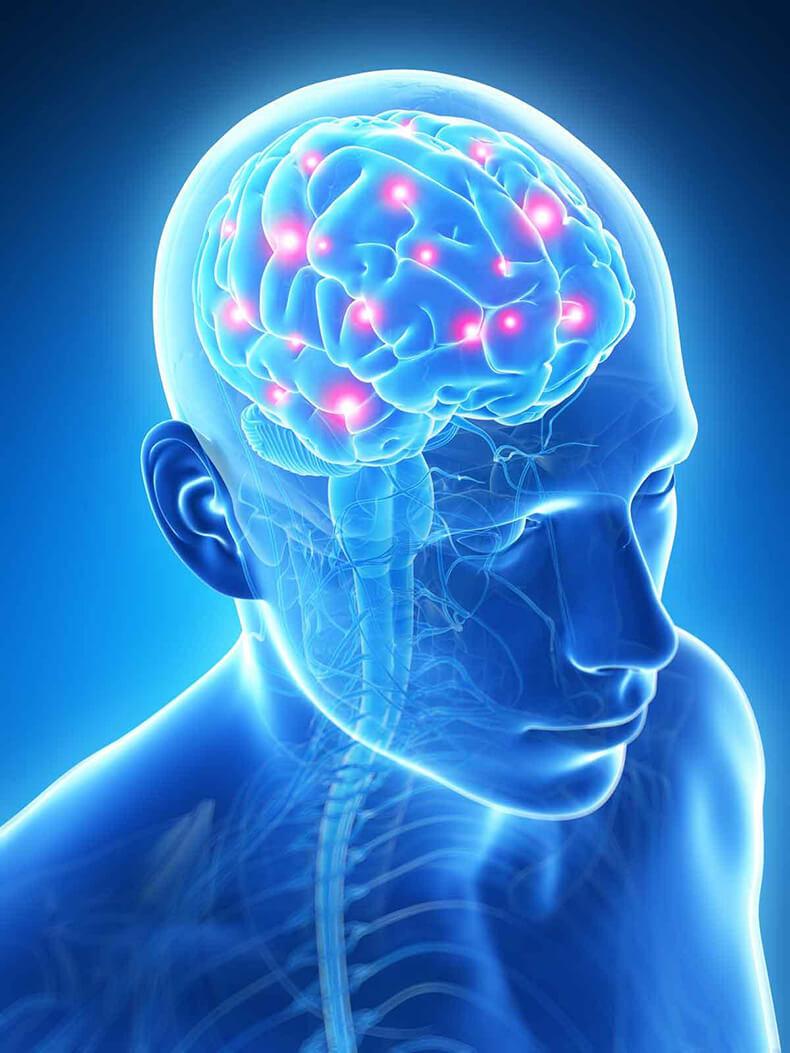 Зеркальные нейроны: терапия «действия и наблюдения» после инсульта, травм и аварий