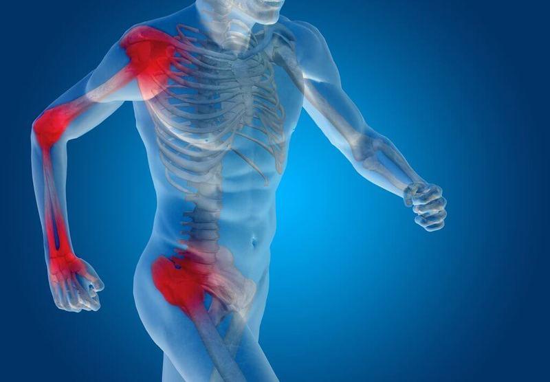 Есть хрящи для укрепления суставов имплантант коленного сустава в москве