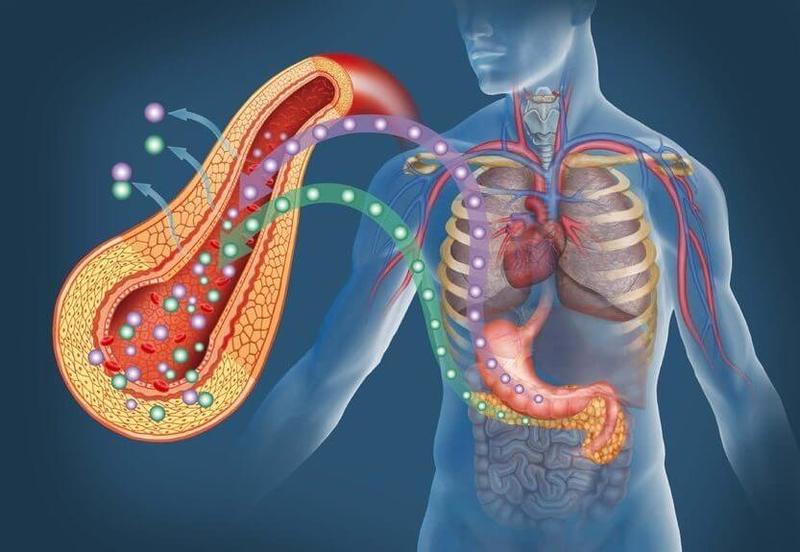 Как взять гормоны под контроль и похудеть