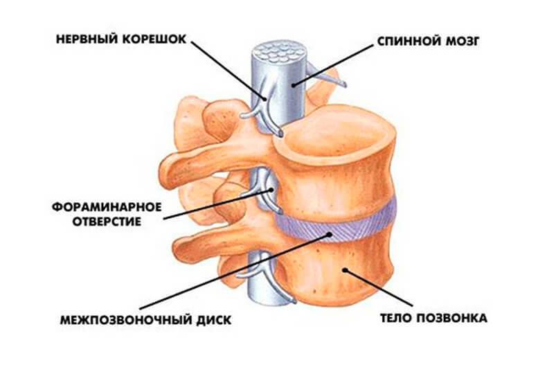 Болят суставы рекомендации врачей thumbnail