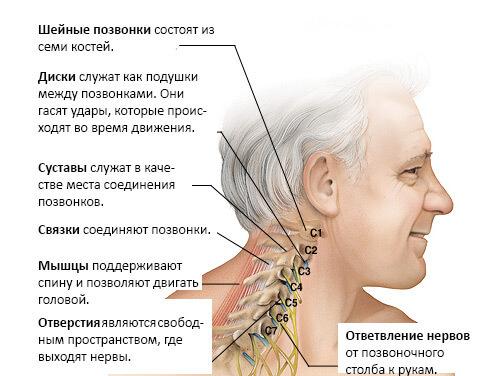 Шейный остеохондроз: 6 упражнений против головокружений