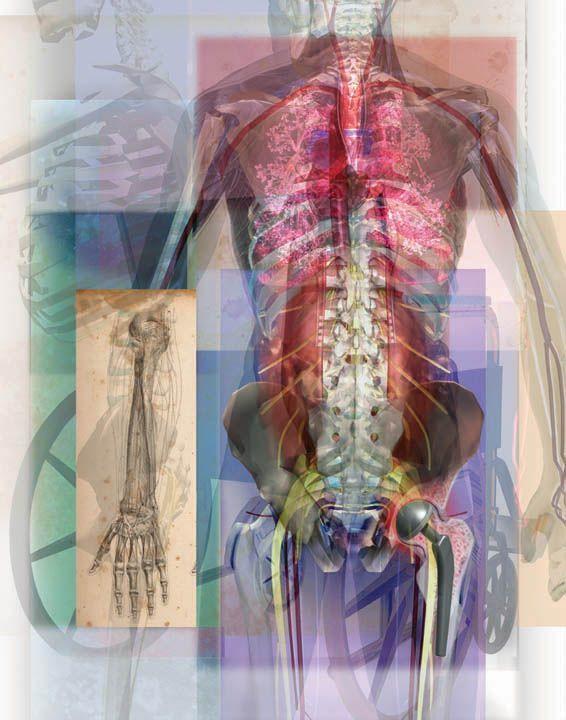 Воспаление дёсен и ревматоидный артрит: в чем СВЯЗЬ