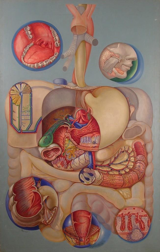 О чем может говорить боль в желудке после еды