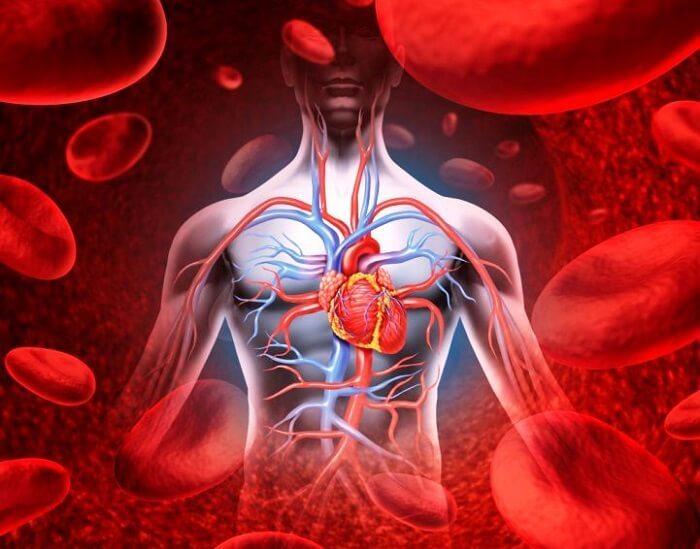 Нарушение кровообращения: 5 НАТУРАЛЬНЫХ средств для лечения