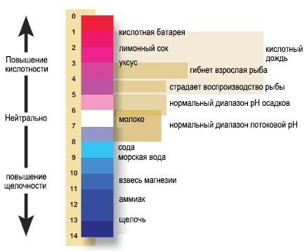 ЩЕЛОЧНАЯ ВОДА: оптимизация pH организма