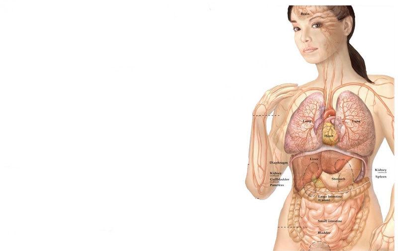 Женская ПСИХОСОМАТИКА: симптом, зашифрованный на языке тела