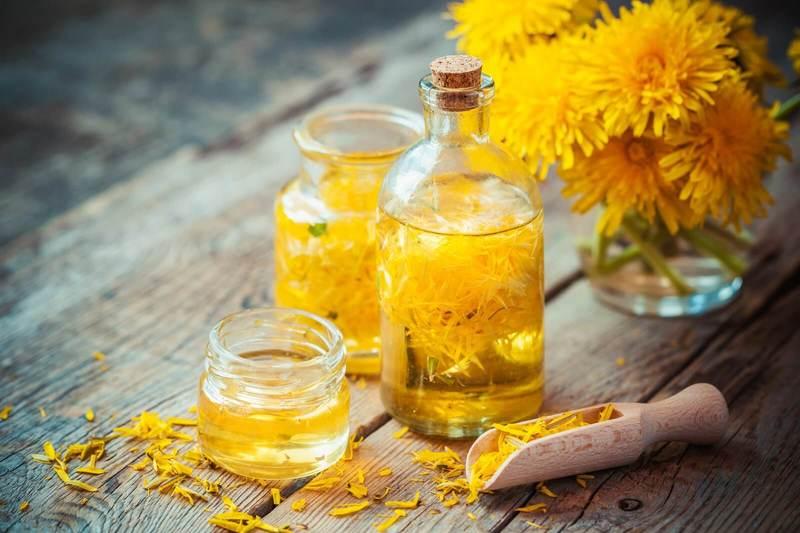 ОДУВАНЧИК: Лечебные свойства и 15 удивительных рецептов