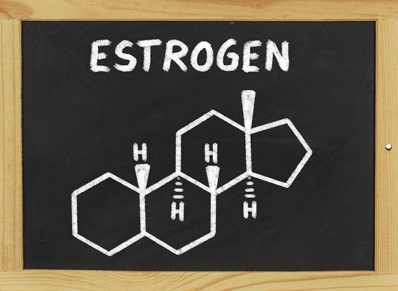 Прогестерон и эстроген 22
