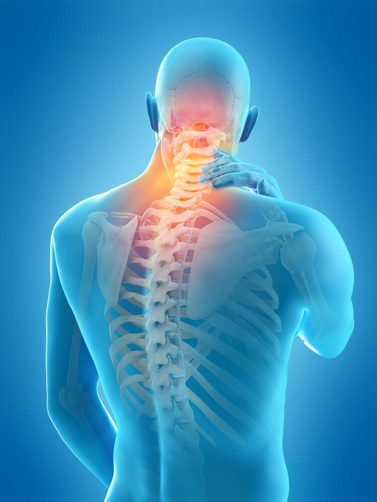 здоровье, боль, спина, позвоночник, заболевание