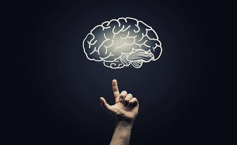 Знание этих 5 фактов о мозге изменит вашу жизнь!