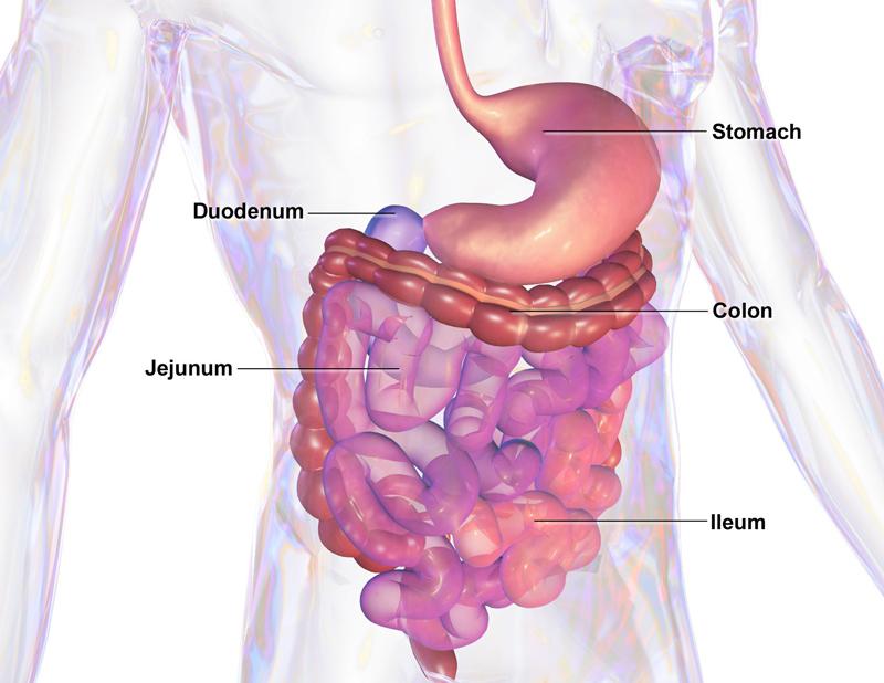 СОДА и ЛИМОН: 4 лечебные процедуры