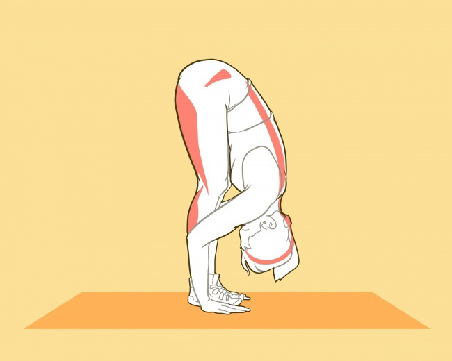 3b447300 Упражнения для увеличения РОСТА: Стать выше можно в любом возрасте!