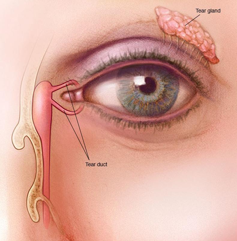 Двоение в глазах: Причины и методы лечения