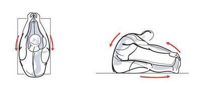 Лучшие упражнения для коррекции осанки