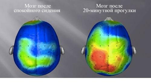 ГОЛОДАНИЕ и тренировки запускают омоложение мозга