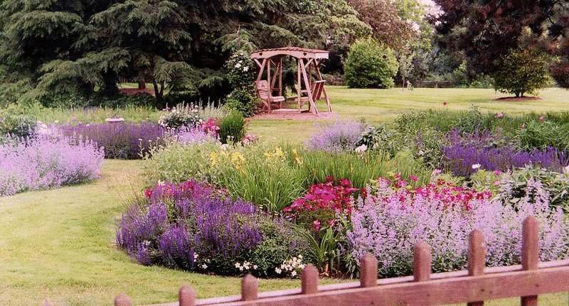 Вересковый сад — атмосфера древних мифов и сказаний на вашем участке