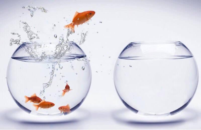 Реактивность — привычка, которая сильно способствует стрессу