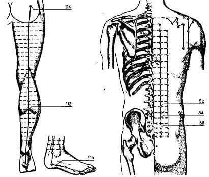 Судороги в ногах: Что может помочь