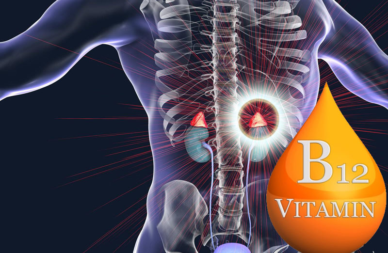 Витамин В12: Здоровая нервная система, надпочечники, метаболизм