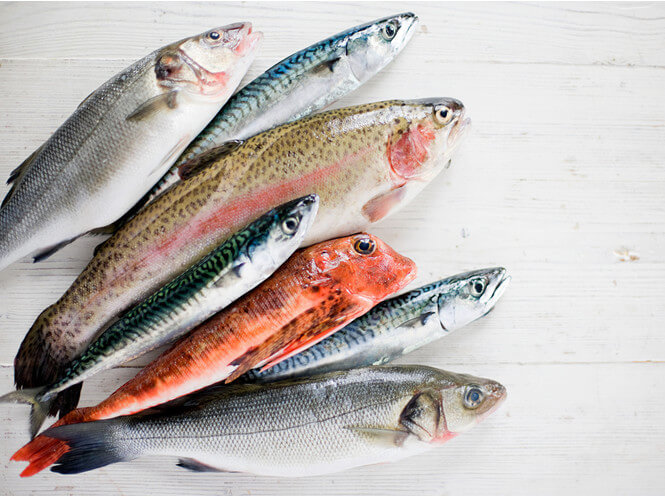Лучшая и худшая для еды рыба