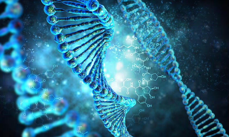 Эпигенетика: теоретические аспекты