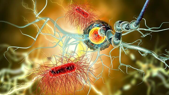 Психосоматика рассеянного склероза
