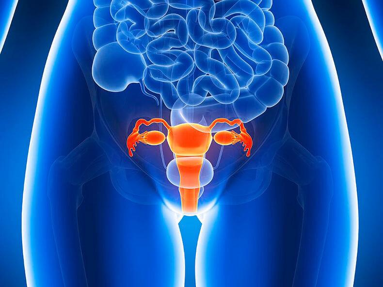 Как определить гормональный сбой по типу фигуры