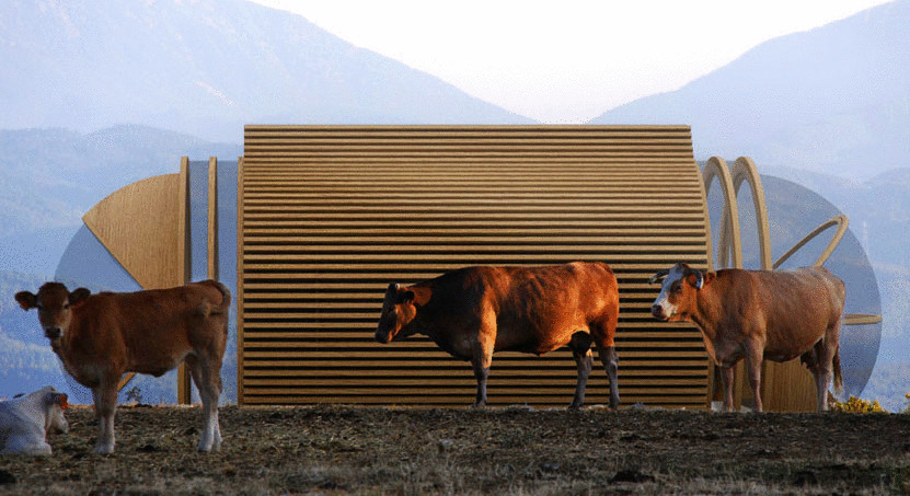Eco-Drop-Hotel-Cows_098