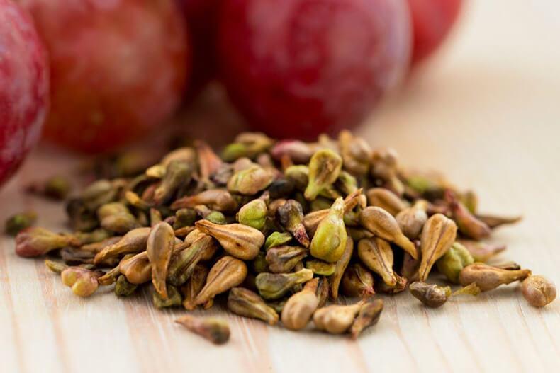 Виноградные семечки: Антиканцерогенные свойства