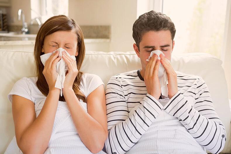 12 признаков скрытой плесени в доме, из-за которой вы болеете