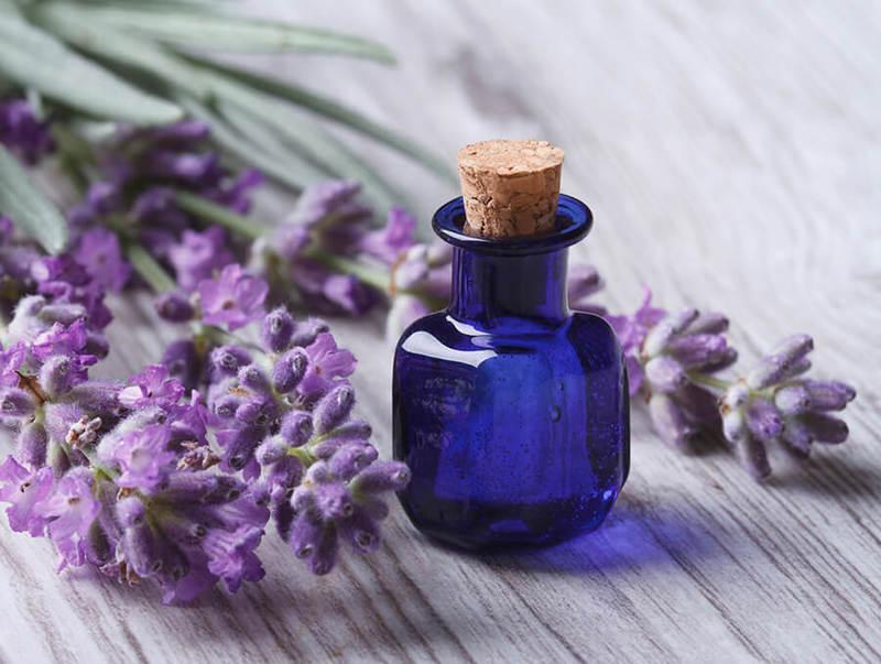 Шалфей: Натуральное лекарство при климаксе и приливах