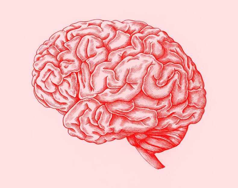 Иллюзии мозга: Когнитивные искажения из-за переизбытка информации