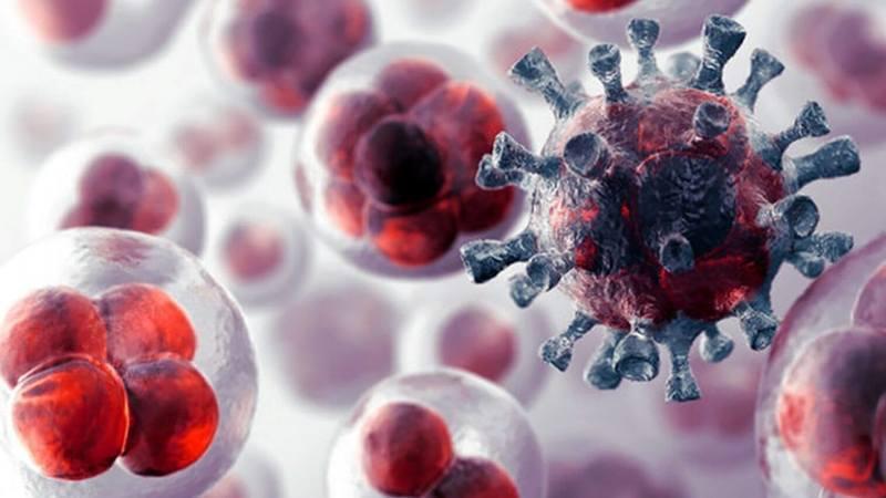 Уморите раковые клетки голодом, чтобы убить рак до того, как он убьёт вас