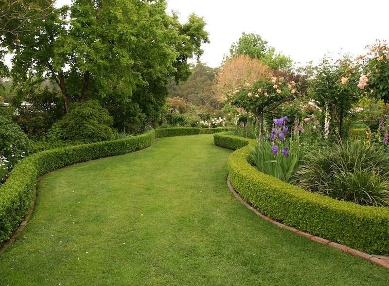 10 визуальных эффектов, позволяющих сделать сад интересным