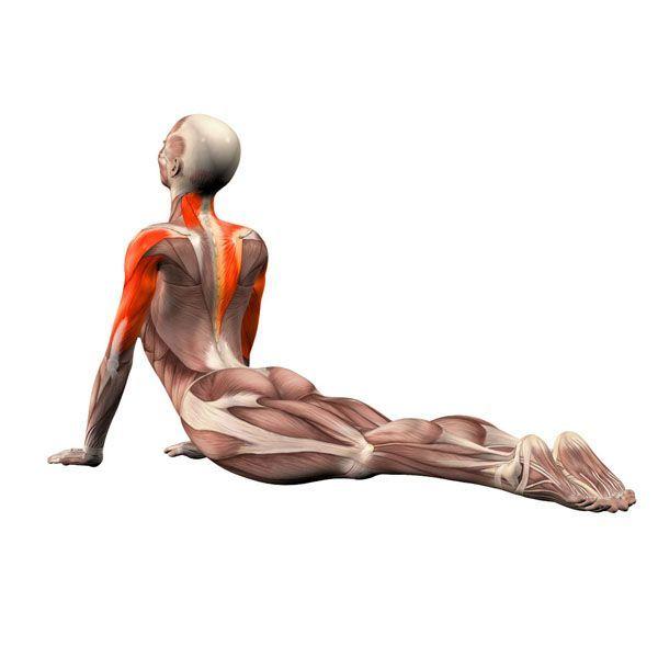10 омолаживающих упражнений, которые подтянут зону декольте и шеи
