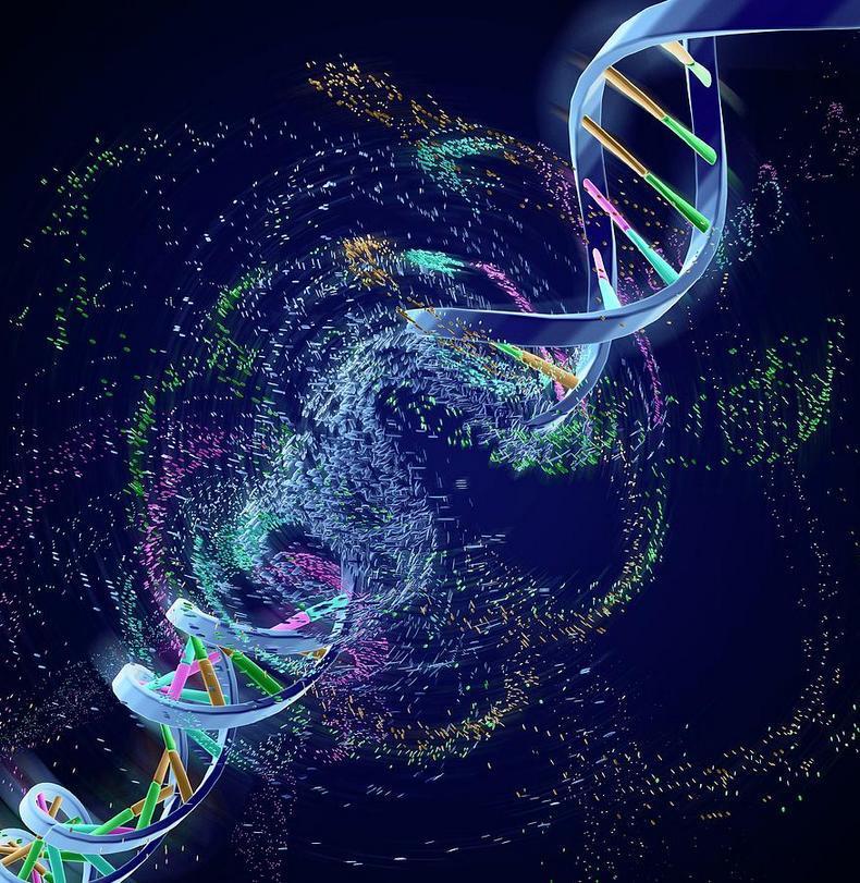 Впервые удалось обратить вспять эпигенетическое старение человека