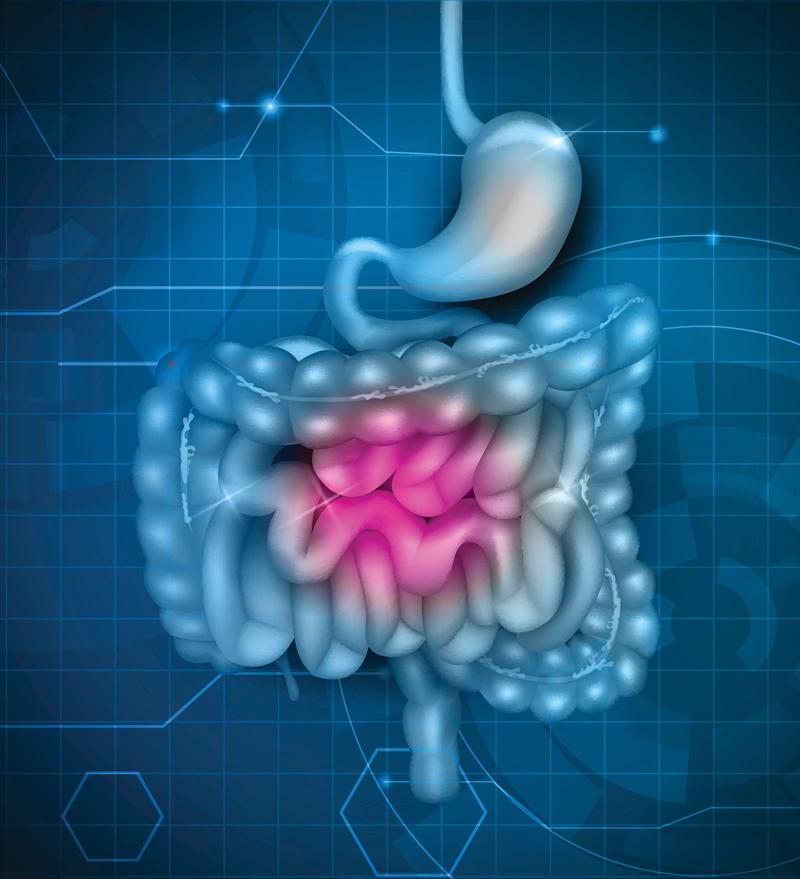 Диета GAPS: Решение проблем с кишечником