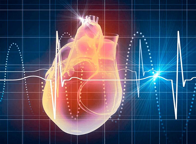 6 лучших способов понизить частоту сердечных сокращений