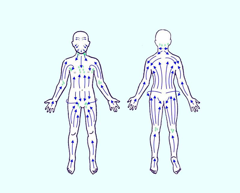 Признаки засоренной лимфатической системы и 10 способов ее очистки