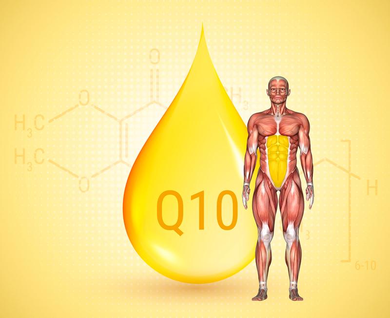 Накормите свои клетки коэнзимом Q10
