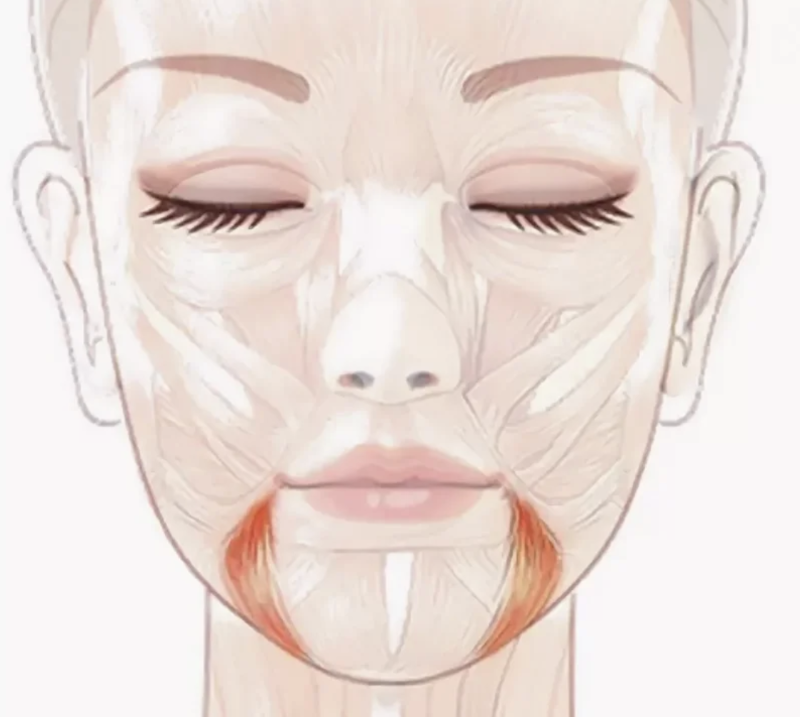 Мышца, которая старит ваше лицо