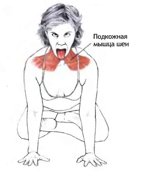 3 мощнейших упражнения для лица, которые лишают хлеба пластических хирургов