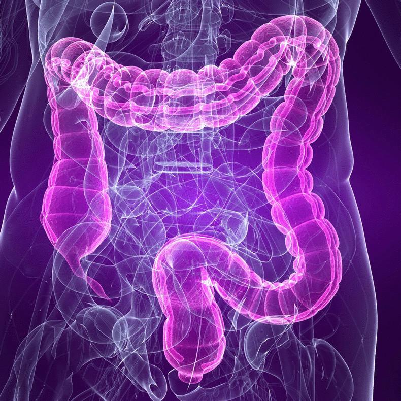 Синдром раздраженного кишечника лечение народными средствами