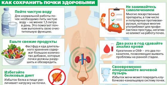 15 привычек, которые убивают ваши почки