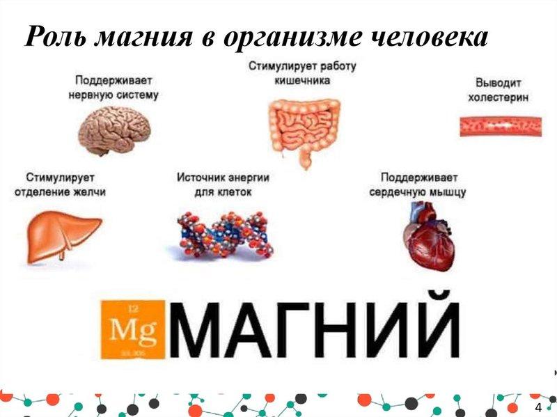 Чудо-минерал для профилактики рака поджелудочной железы